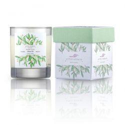 Little Secrets Olive Oil Monoi Φυσικό αρωματικό κερί σόγιας 150ml - Little Secrets
